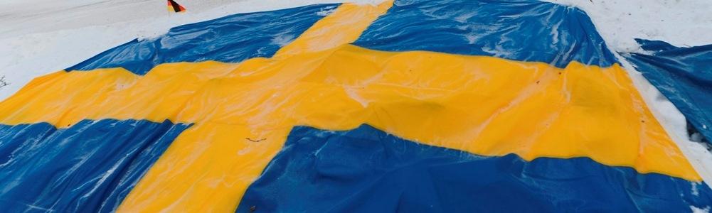 Cine va castiga Raliul Suediei 2014?